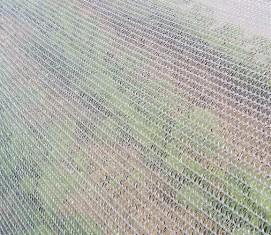 Filet anti insectes gamm vert