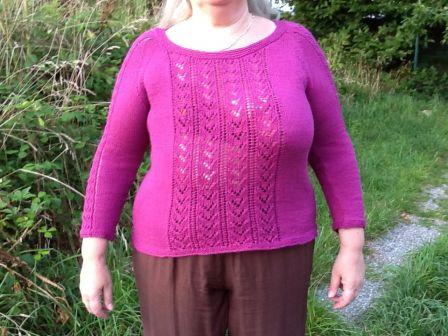 Modele tricot bergere de france gratuit - altoservices