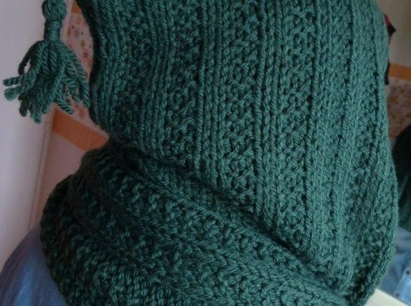 Modele tricot echarpe capuche femme gratuit - altoservices 9c938c8e8c1